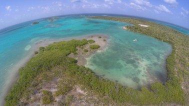 Antigua-Mangroves